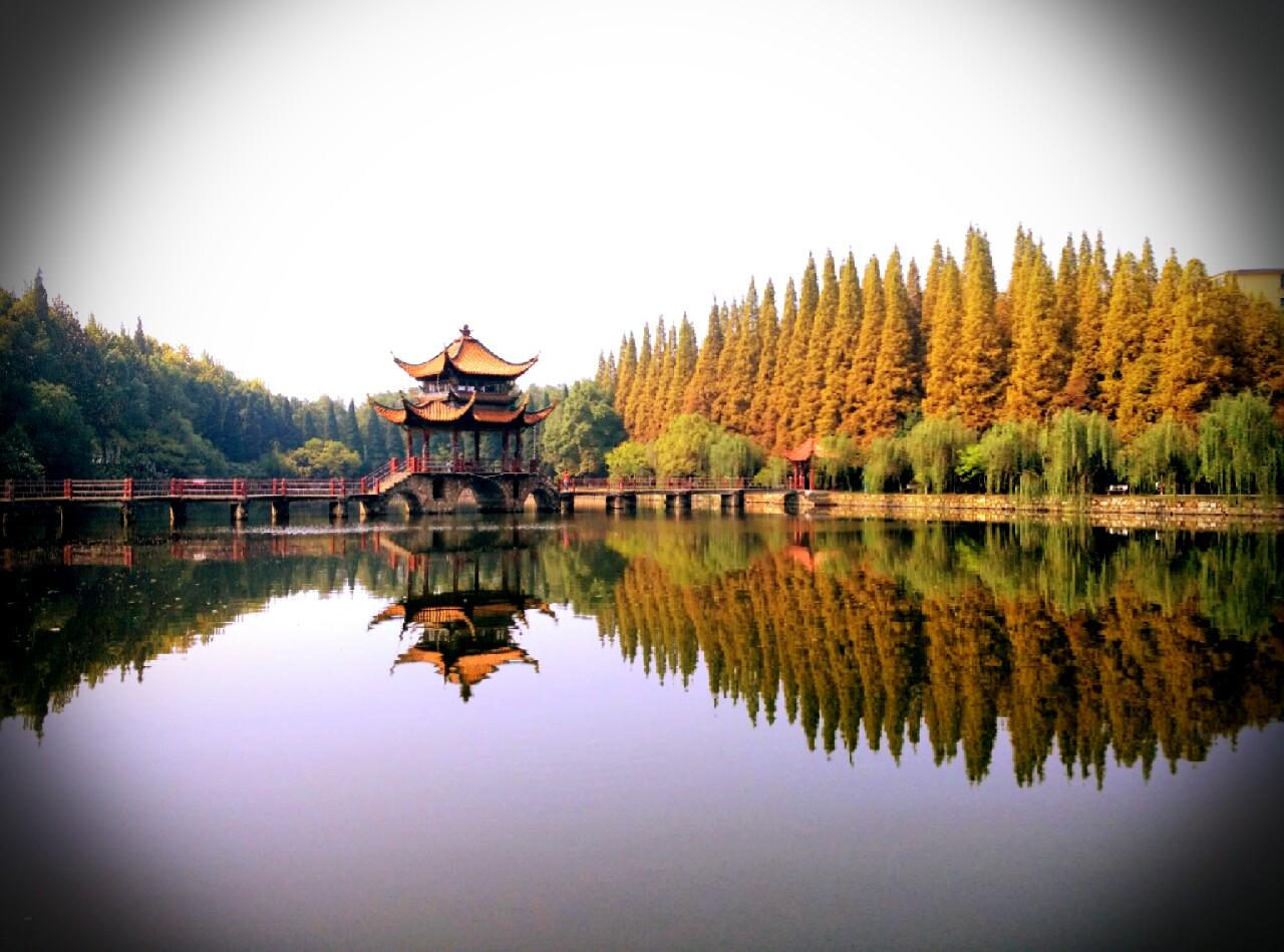 2021年10月武汉自考考试时间:10月15-17日